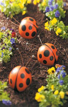 bowling-ball-ladybugs