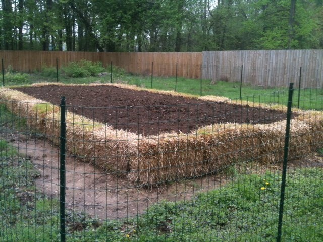 straw bale garden planting project straw bale raised garden bed a gardeners notebook