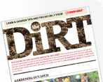Tb dirt logo