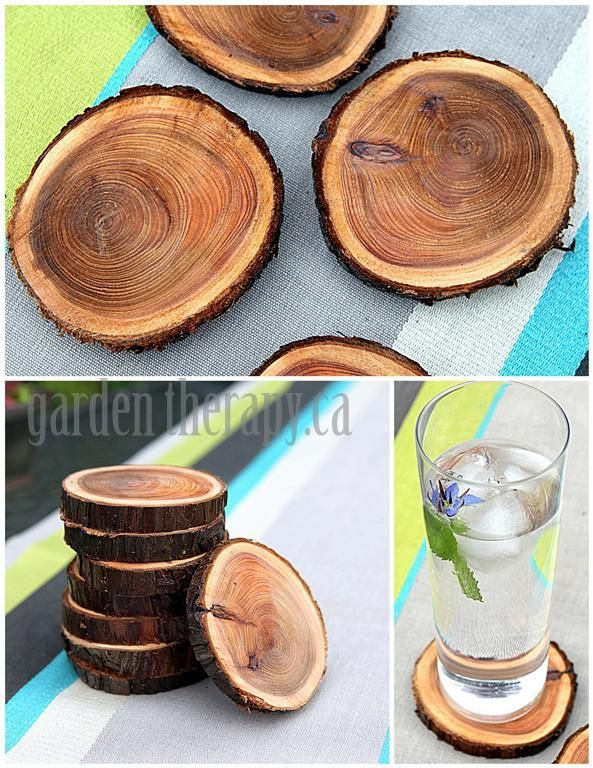 tree-branch-coasters