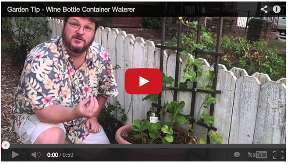 wine-bottle-waterer