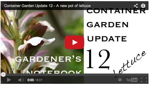 agn-container-garden-012