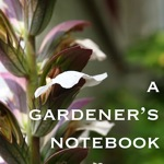 A Gardener's Notebook Artwork