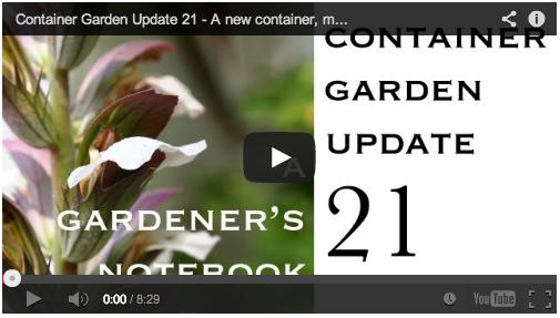 container-garden-update-21