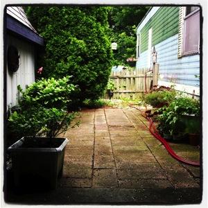 Donna garden