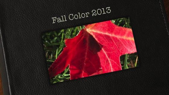 Fall color 2013 thumb