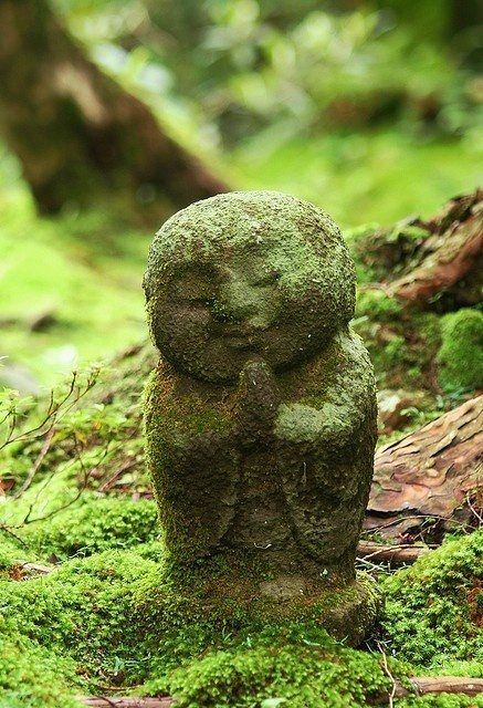 Moss-covered Buddha via Tumblr
