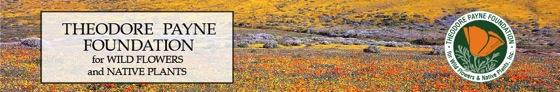 Theodore payne wildflower hotline