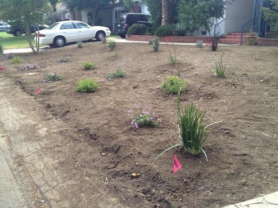 Garden change 1