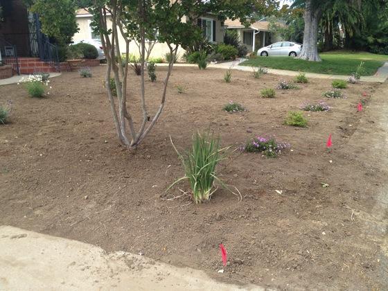 Garden change 2