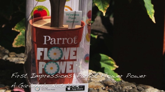 Video: First Impressions of the Parrot Flower Power - Wireless Indoor/Outdoor Bluetooth Smart Plant Sensor