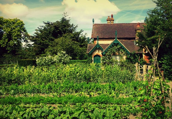 Lovely Kitchen Garden from Garden Gallery