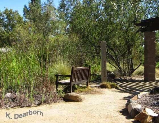 Native CA Plants in a Hidden Garden - Pierce College Botanical Garden via Animalbytes