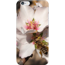 Apricot iphone