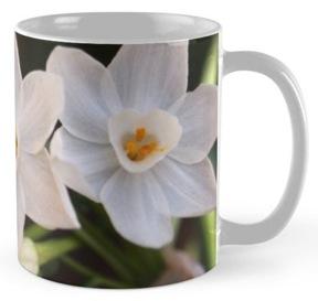 Paperwhites mug
