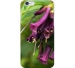 Lochroma iphone