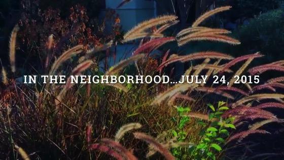 Neighborhood google
