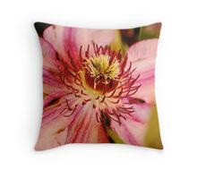 Clematis pillow