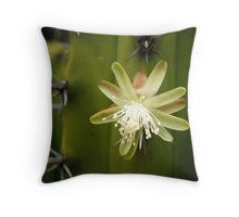 White cactus pillow