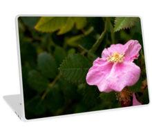 River rose laptop