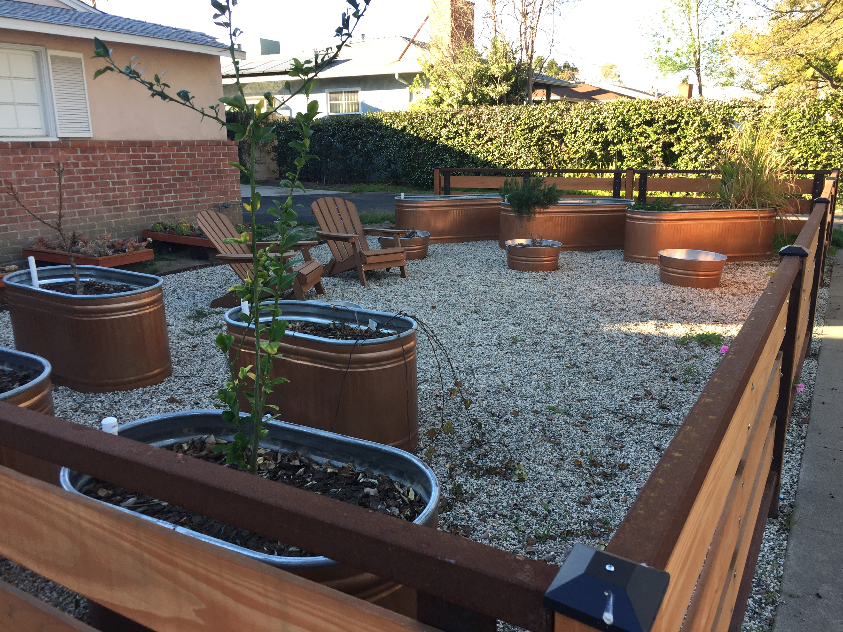 Large scale container garden with galvanized tanks in the neighborhood a gardener 39 s notebook - Galvanized containers for gardening ...