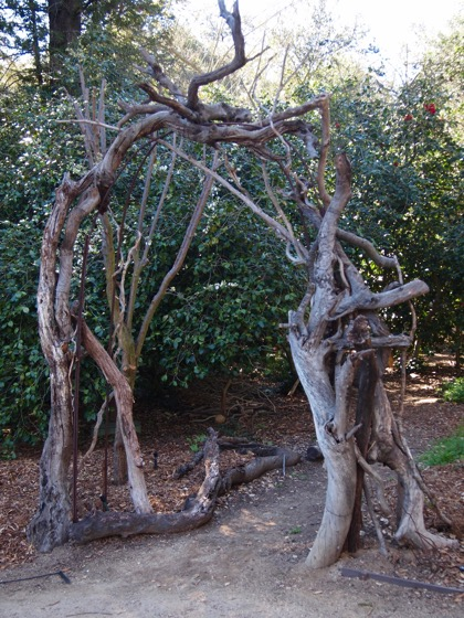 Twig trellis 1
