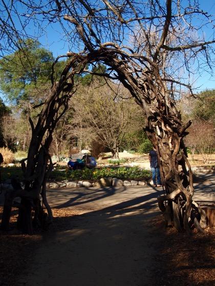 Twig trellis 2