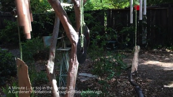 A Minute (...or so) in the Garden 38: Wind Chimes