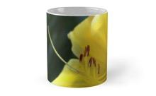 Yellow daylily mug