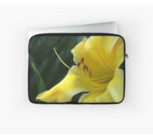 Yellow daylily sleeve