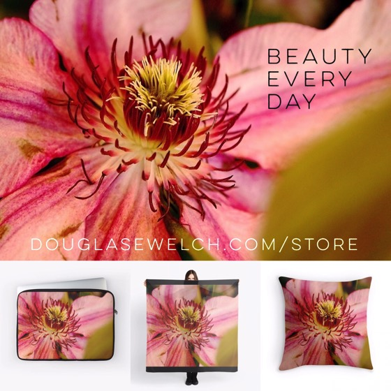 Enjoy Beauty Every Day with these Clematis products available exclusively from DouglasEWelch.com/store #clothing #home #technology #arts #crafts #flowers #plants #garden #products #nature