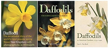 Daffodil books