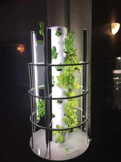 Tower Garden spotted in Stephens College Cafeteria