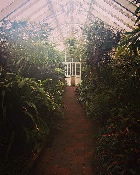 Tropical House, Conservatory, Dunedin Botanic Garden, Dunedin, New Zealand via Instagram