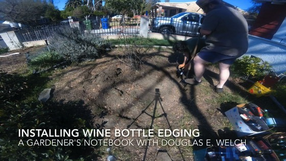 Installing Wine Bottle Edging Timelapse from A Gardener's Notebook [Video] (1:38)