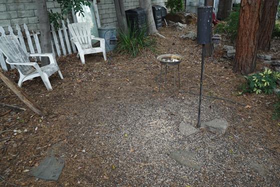 Guilty garden 3
