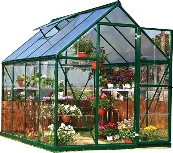 Palmram greenhouse 2