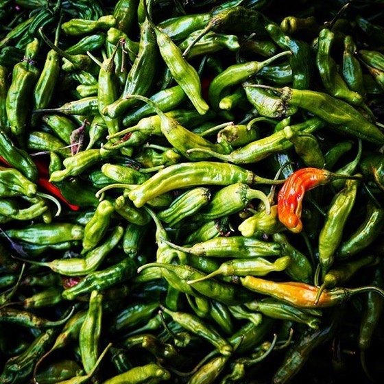 Chilies  - Follow Me On Instagram!