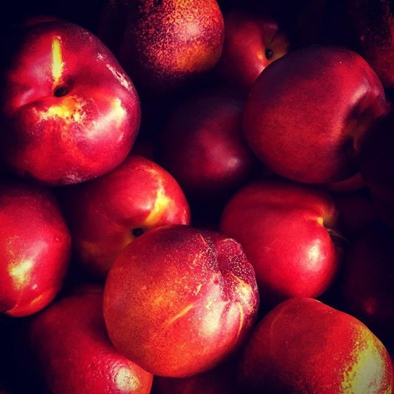 Peaches at the Farmers Market -- Follow Me On Instagram!