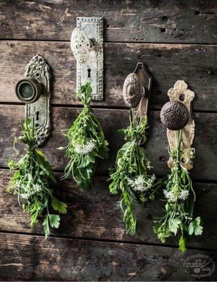 Garden Decor: Antique Doorknob Flower and Herb Drying Display