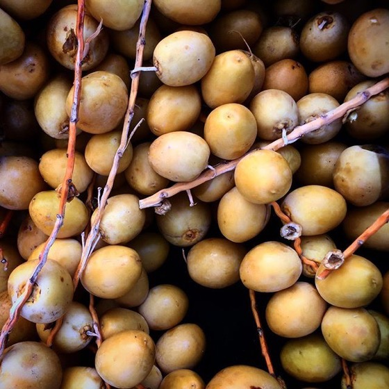 Yellow Barhi Dates via Instagram