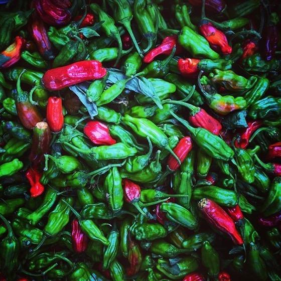 Box o' chilies 🌶via Instagram