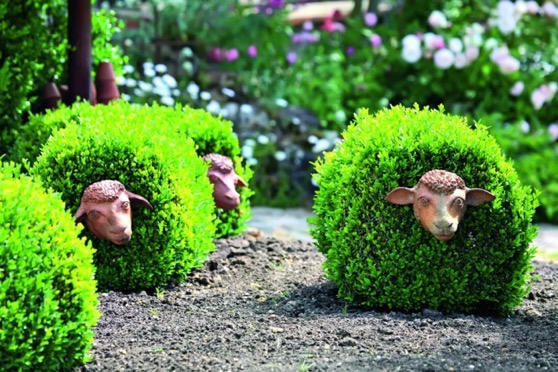 Garden Decor: Shrubs or Topiary Frames with Sheep Faces