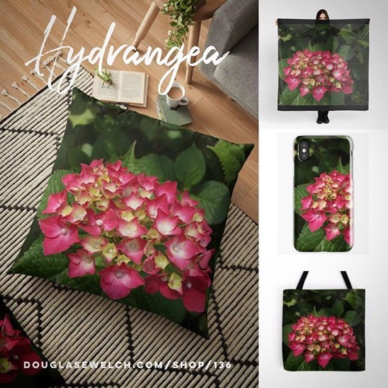 Bring the garden inside with these Hydrangea Pillows, Totes, iPhone Cases and Much More!