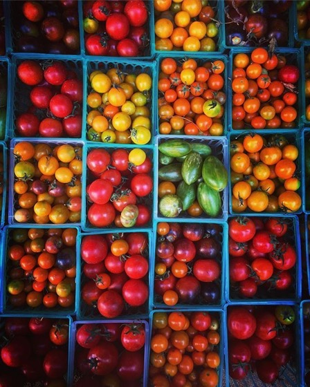 Tomatoes of all shapes and sizes via Instagram