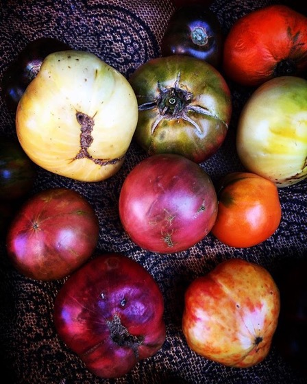 Heirloom tomatoes at the local Farmers Market via My Instagram