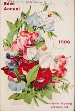 Historical Seed Catalogs:  Adolphus Wysong; Henry G. Gilbert Nursery and Seed Trade Catalog - 5 in a series