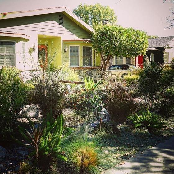 Local Waterwise Garden, Sherman Oaks, California via Instagram