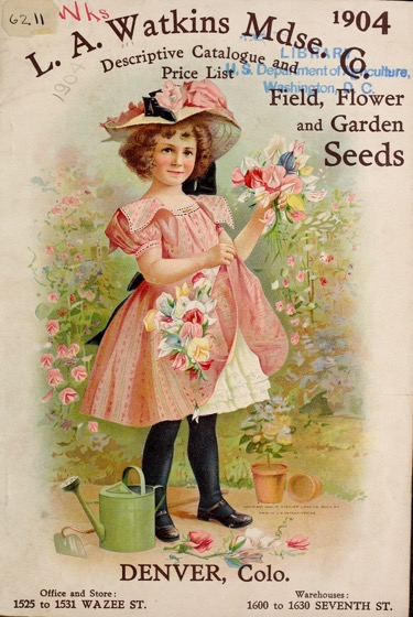 Historical Seed Catalogs: Catalog, L.A. Watkins Merchandise Company (1904) - 15 in a series
