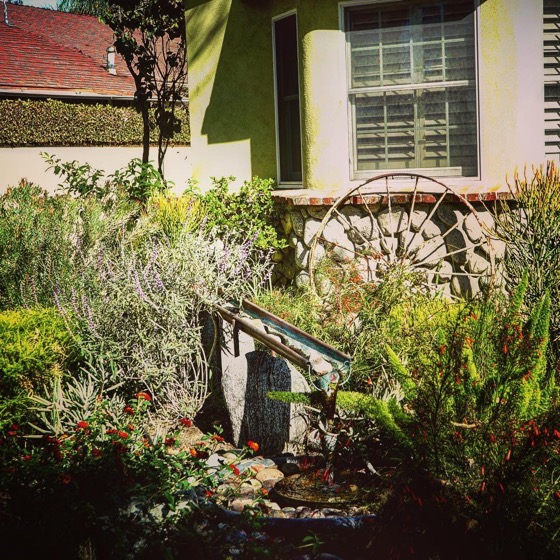 Lovely copper gutter fountain in water wise garden via Instagram